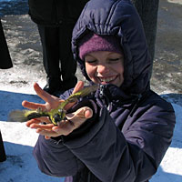 По старинной традиции в  день Благовещения в России выпускали на свободу птиц
