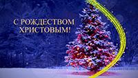 Митрополит Ростислав поздравил томичей с Рождеством Христовым