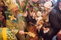 Митрополит Ростислав возглавил богослужение в канун Вербного воскресения