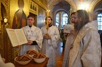 Митрополит Ростислав в Рождественский сочельник возглавил богослужение в Богоявленском кафедральном соборе