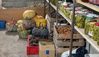 Томичей приглашают принять участие в сборе овощей и солений в социальный погреб