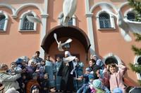Белые голуби взметнутся в томское небо в день Благовещения