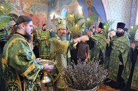 В канун праздника Входа Господня в Иерусалим митрополит Ростислав совершил всенощное бдение в Богоявленском соборе