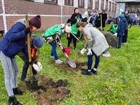 В Северске высадили деревья в честь детей, чьи матери отказались от аборта
