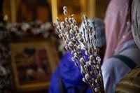 Православная Церковь торжественно отметила Вербное воскресение